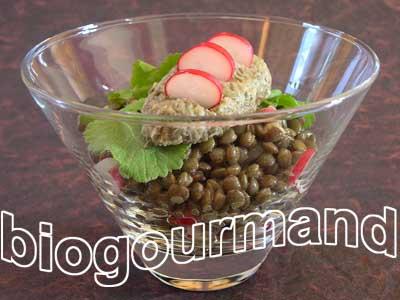 Salade de lentilles vertes quenelle cr meuse et radis roses blog recettes bio cuisine bio - Cuisiner les lentilles vertes ...